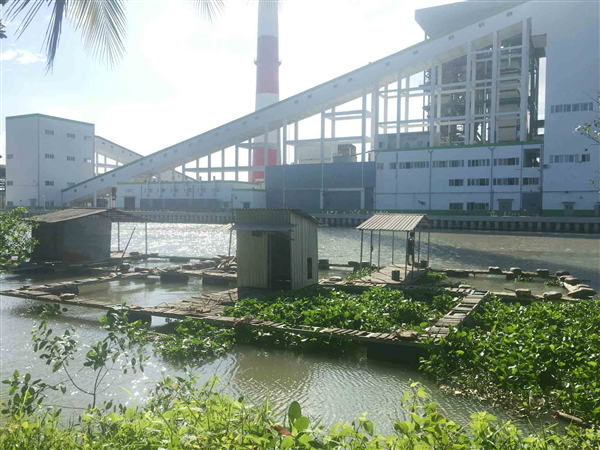 Fish farms in Hau Giang closed for fear of pollution from paper mill